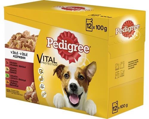 Kapsičky pre psov Pedigree Adult 12 x 100 g