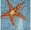 Sklenená mozaika GM K39P morská hviezda 116,4x116,4 cm