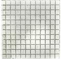 Sklenená mozaika XCM 8SB16 STRIEBORNÁ 30x30 cm