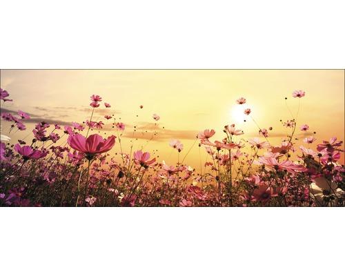 Sklenený obraz Flowerfield III, 30x80 cm