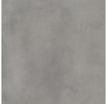 Dlažba Walk Grey 60x60 cm
