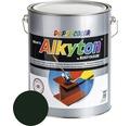 Farba na kov Alkyton lesk 5 l machovo zelená RAL6005