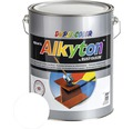 Farba na kov Alkyton lesk 5 l signálna biela RAL9003