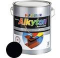 Lak na drevo Alkyton lesk 5 l čierna RAL9005