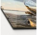 Sklenený obraz Drop On Water 50x125 cm
