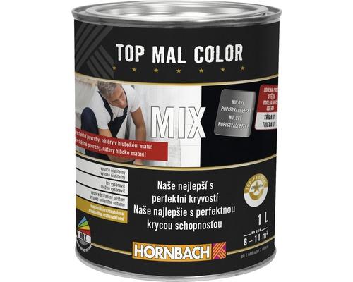 Hornbach MIX Top Mal Color 1 l B