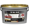 Hornbach MIX Top Mal Color 5 l A