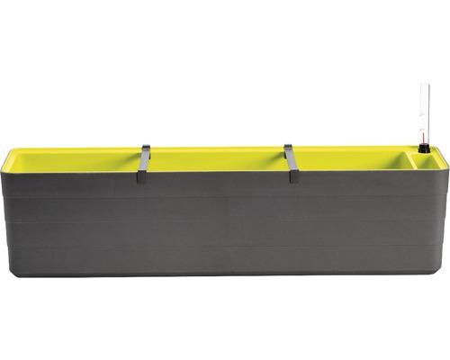 Samozavlažovací hrantík Lafiora Berberis 80 cm antracit-zelený
