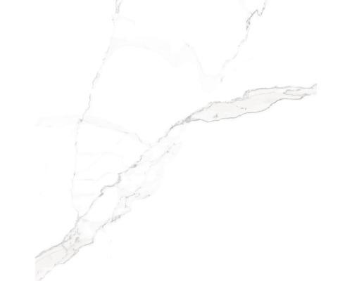 Dlažba Sem Satvario 60x60 cm
