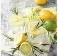 Sklenený obraz Lemonade 20x20 cm
