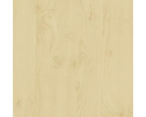 Samolepiaca fólia d-c-fix® drevodekor breza 45x200 cm