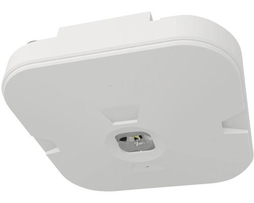 LED núdzové svietidlo Panlux CORDELIA CORRIDOR 3W