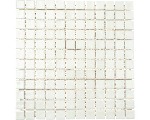 Sklenená mozaika GM AS 1010 30,5x32,5 cm biela