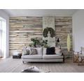 Fototapeta Whitewashed Wood, motív drevo 368x254 cm