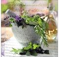 Sklenený obraz Herbage pestle I 30x30cm
