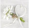 Sklenený obraz White Spring I, 20x20cm