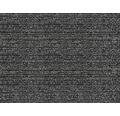 Čistiaca rohožka CAPRI čierna 2 m (šírka)