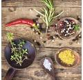 Sklenený obraz Herbage In Bowl IV 20x20 cm
