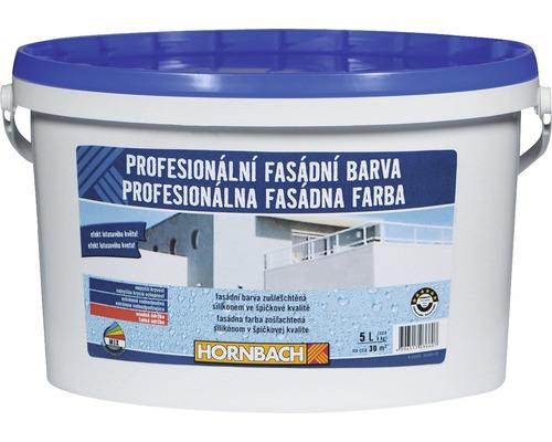 Profesionálna fasádna farba Hornbach biela 5 l